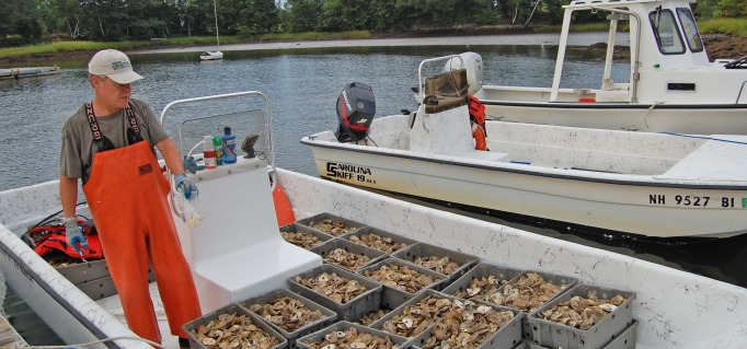 boat loaded with shellfish